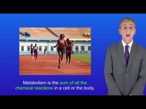 GCSE Science Biology (9-1) Metabolism