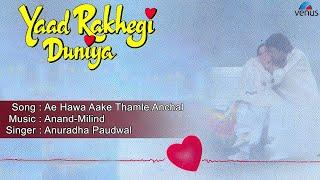 Yaad Rakhegi Duniya : Ae Hawa Aake Thamle Anchal Full Audio Song | Aditya Pancholi, Rukhsar |