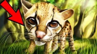 猫は世界中で愛されている動物です。 今猫を飼っている、または今後飼っ...