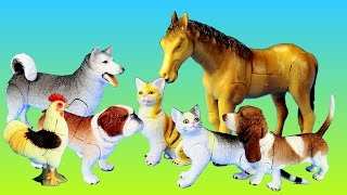 Toy Pet Animals 3D Puzzles Collection Dogs Cats Horse │Animal Toys For Kids