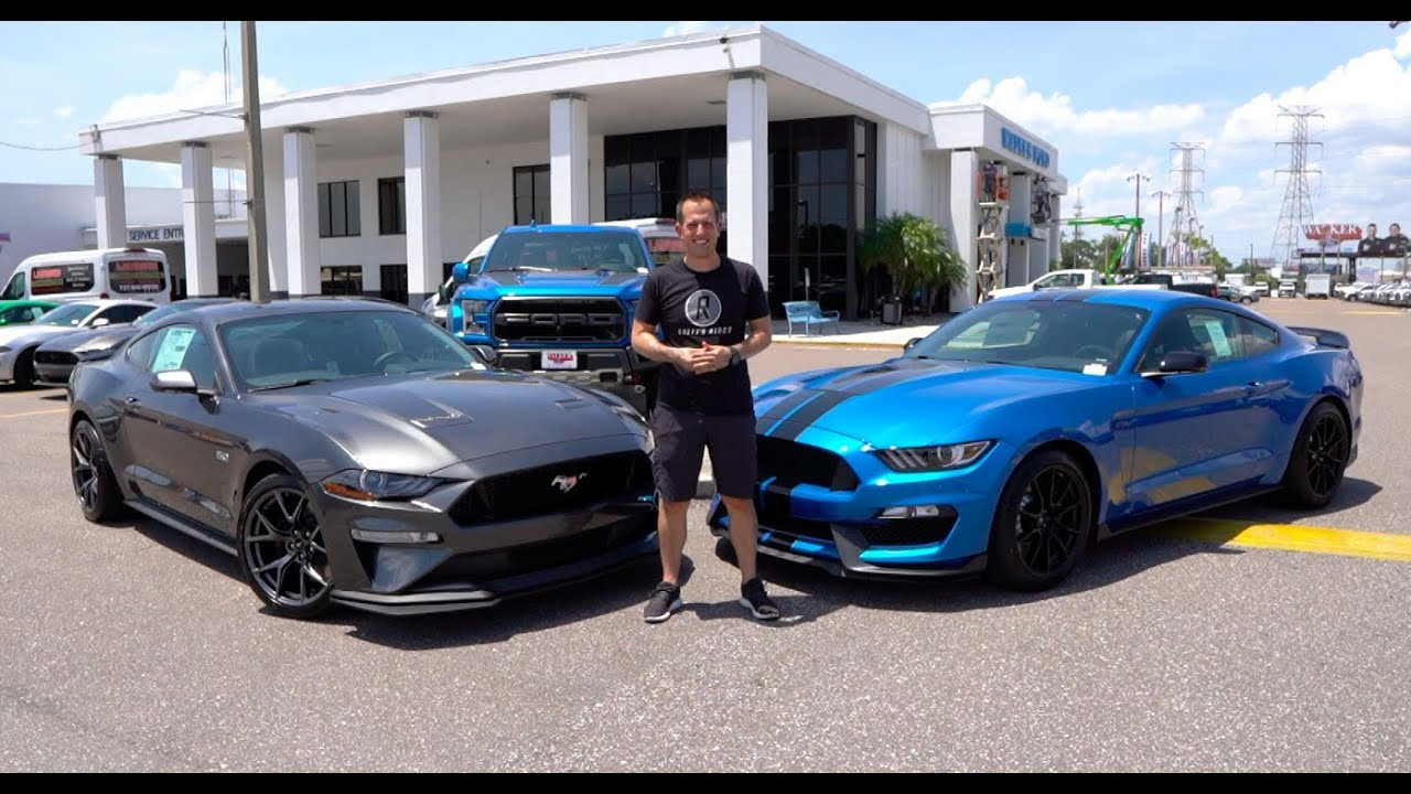 Is The 2019 Mustang Gt Pp2 The Better Buy Over A Shelby Gt350 Youtube
