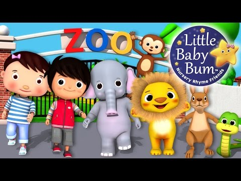 Zoo Song | Animal Song | Plus Lots More Nursery Rhymes | From LittleBabyBum!