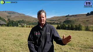 Brandon Leer Chats To Us About The Upcoming Stey Braes Auction