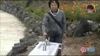 Pegadinha Japonesa | Bebedouro Troll | @JapaLocoBlog