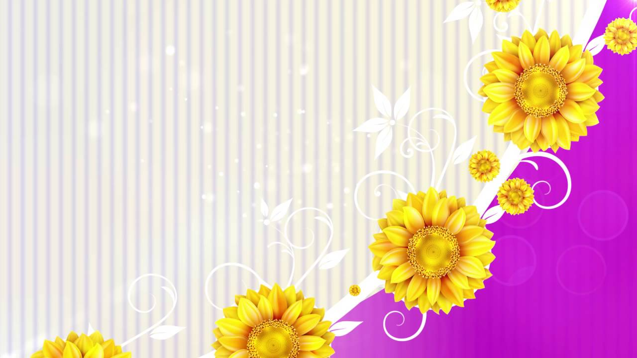 Flower Background Wedding Background Video Video Hd Youtube