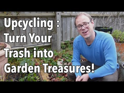 Upcycling Projects: Turn Your Trash into Garden Treasures!