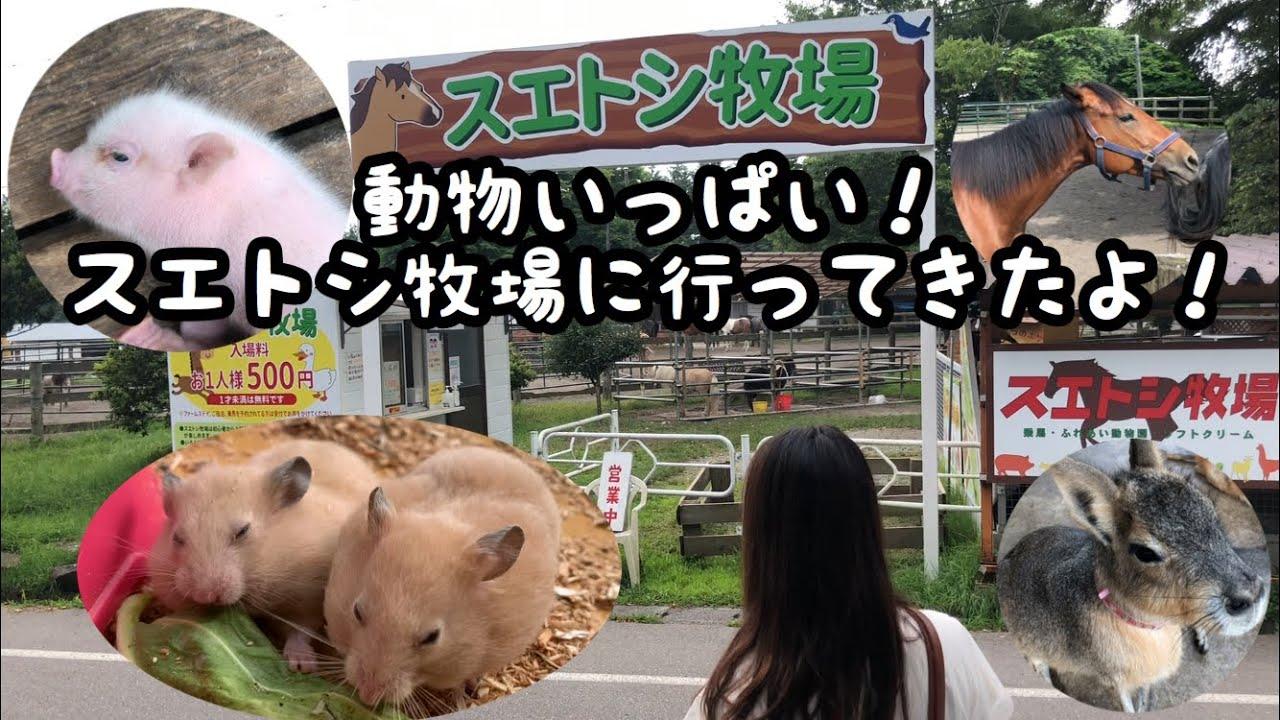 【スエトシ牧場】動物いっぱいスエトシ牧場に行ってきた!ハムスターもいたよ!