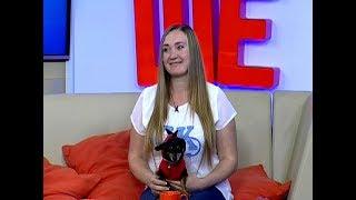 Дизайнер одежды для кошек Татьяна Столярова: я начала шить, потому что ушла в декрет и завела кота