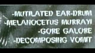 Gore Galore - Composing Decomposition (49 Untitled Tracks)