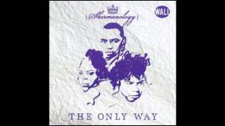Shermanology - The Only Way (Original Mix)