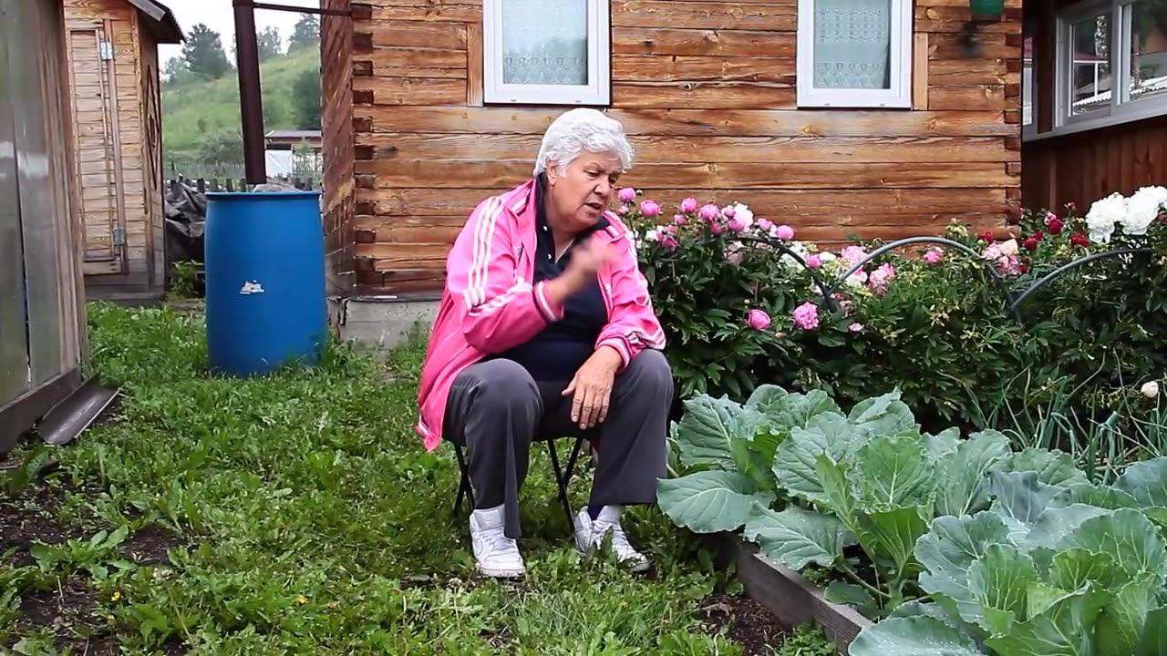 162 Борьба с вредителями и болезнями капусты