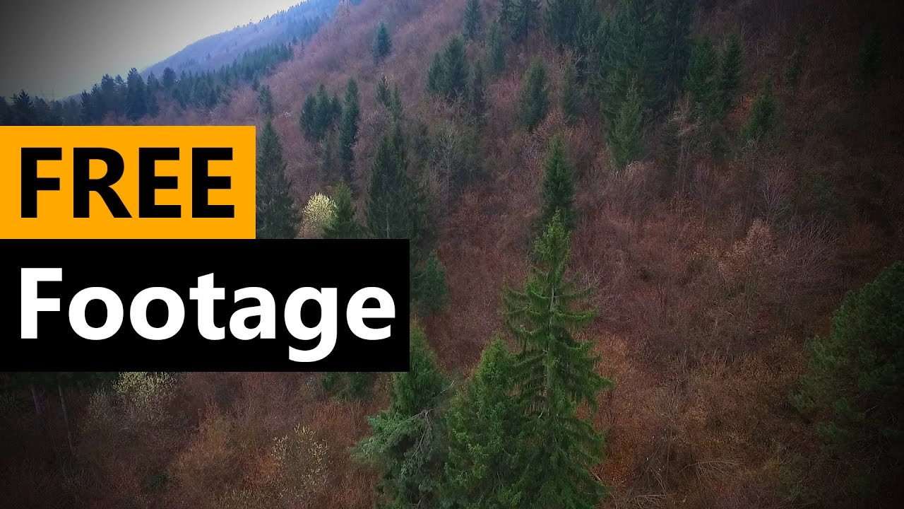 Learn more about calculating square footage at howstuffworks. Forest drone Footage - FREE Stock Video Footage [Download ...
