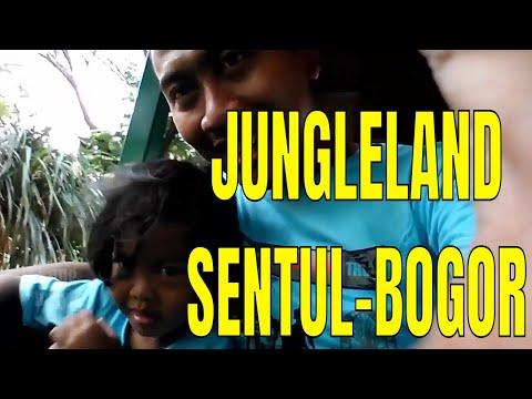 jungle-land-&-wahana-yang-paling-disukai-pengunjung