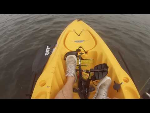 Kayak Fishing With SeaGrass Charters Port Saint Joe Florida   May 2017