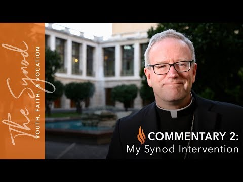 Word From Rome - Commentary #2 - My Synod Intervention