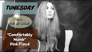 Comfortably Numb - Pink Floyd cover Katie Cole Tunesday