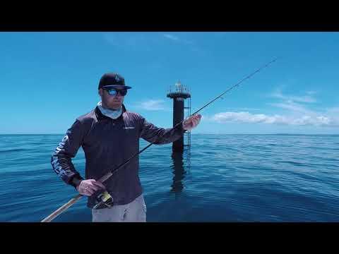 Spinning for Pelagics | Fisho App