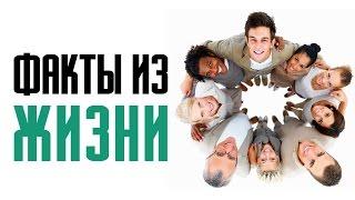 14 фактов из жизни и интересные особенности человека