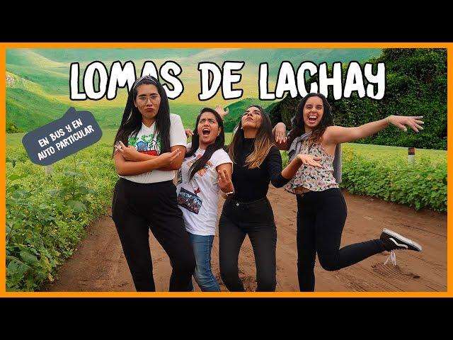 Full day LOMAS DE LACHAY ¡BARATO! ⛰🌿 | MPV en Lima