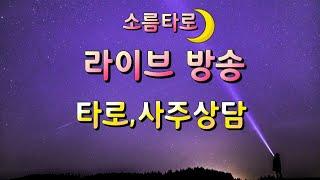 소름타로 라이브 무료 점술방송