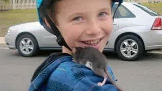 Boy, 10, dies from rat bite fever; Family sues Petco
