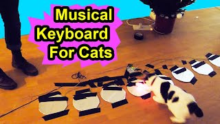 Musical Keyboard For Cats - Make Your Cat A Musical Virtuoso - YOUTUBE SECRET SANTA