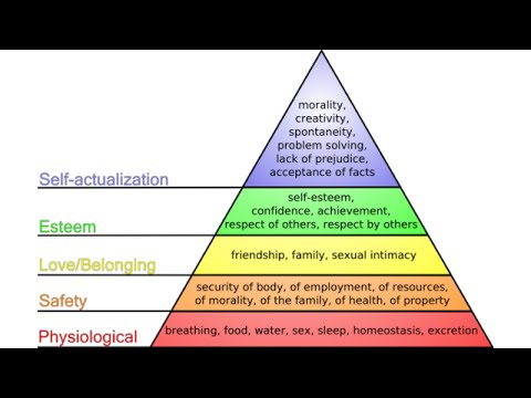 Theory of Human Motivation | American Psychology, 1922-1947