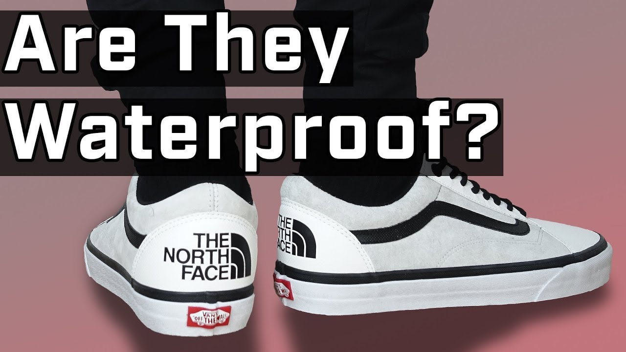 the north face y vans