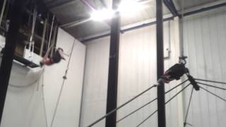Flying Trapeze With Gorilla Circus