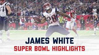 James White Sets Super Bowl Record | Patriots vs. Falcons | Super Bowl Player Highlights Video