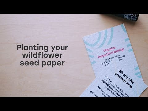 How to Plant Your Seed Paper