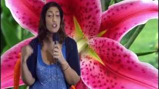 Western Astrology vs Vedic Astrology. Astrology FAQ by Nadiya Shah