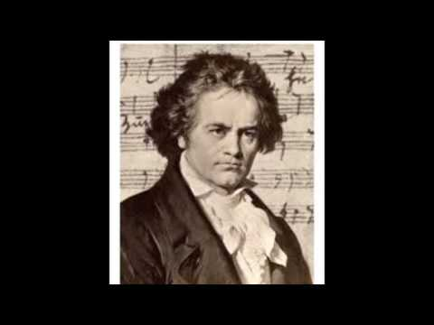 Biography Documentary   Beethoven