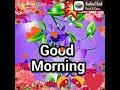 Beautiful sing tone Whatsapp Status Video Download Free