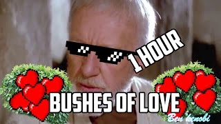 Bushes of Love [1 Hour Loop]