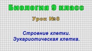 Биология 9 класс (Урок№8 -Строение клетки. Эукариотическая клетка.)
