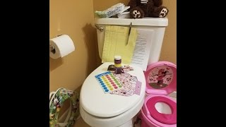 HOW 2 POTTY TRAIN the special needs child