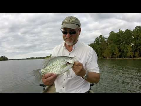 Fall Crappie Fishing, Santee Cooper Lake, SC - October 2019