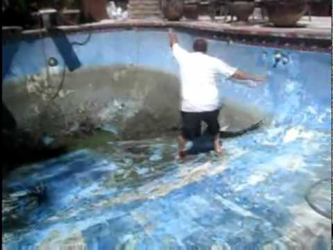 Wicked Pool Cleaning Faceplant Youtube
