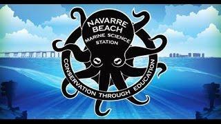 Navarre Beach Marine Science Station Underwater Camera