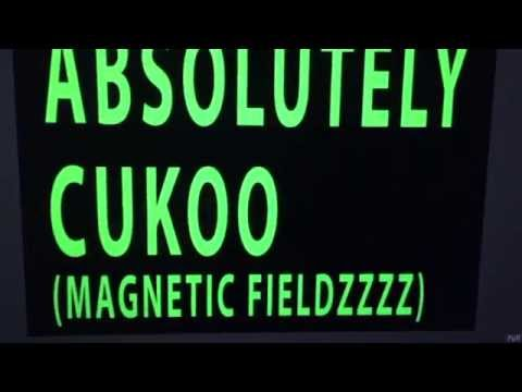 FIDLAR & BULLY - ABSOLUTELY CUKOO (MAGNETIC FIELDS)