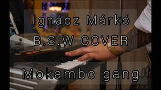 Ignácz Márkó - BSW - MOKAMBO G…