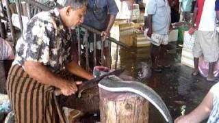 Sri Lanka,ශ්රී ලංකා,Colombo,කොළඹ,St John's Fish Market, fishcutter