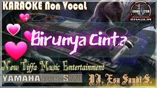 [2.70 MB] KARAOKE Birunya Cinta-Dayu A.G-Yamaha PSR-S770 (Tiffa Music)