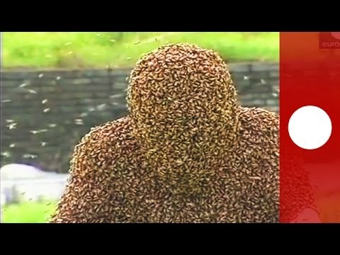 Covered in bees: China man spends a record hour in living bee coat