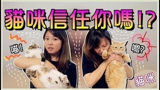 【魚乾】五種方法!測試貓咪對你的信任程度...小心別被咬啊!