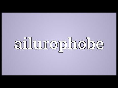 Header of ailurophobe