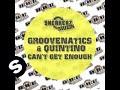 Groovenatics featuring Quintino - Can't Get Enough (Groovenatics re-edit)