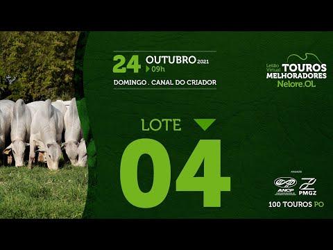 LOTE 4 - LEILÃO VIRTUAL DE TOUROS MELHORADORES  - NELORE OL - PO 2021