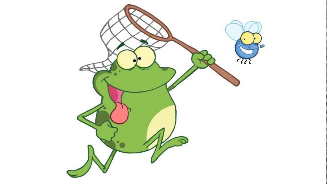 Comment dessiner une grenouille chassant une mouche avec - Dessin de mouche ...